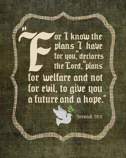 Jeremiah 29:11 For I know the Plans I have for You (White Dove)-Inspire Me-Art Print