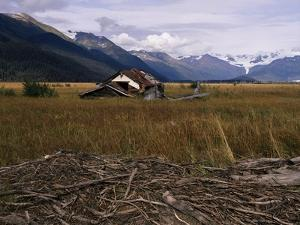 Disused Trapper's Hut and the Grassland, Forest and Glacier of Fort Richardson Park, Alaska, USA by Jeremy Bright
