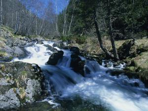 Mountain Stream in La Massana in Andorra, Europe by Jeremy Bright