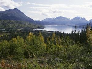 Northern Coniferous Forest Around Lake Skilak on the Kenai Peninsula, Alaska, USA by Jeremy Bright