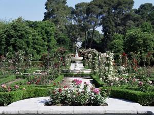 Rose Garden, Parque Del Retiro, Madrid, Spain by Jeremy Bright
