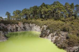 The Devil's Bath, Waiotapu Goethermal Wonderland, Rotorua, New Zealand, Oceania by Jeremy Bright