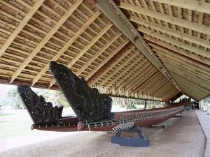 War Canoe (Ngatokimatawhaorua in Maori Language), 35M Long, 80 Rowers, Waitangi National Reserve by Jeremy Bright