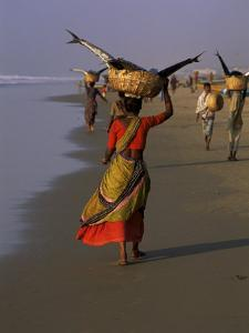 Women Carrying Fish Catch to the Market of Fishing Village, Puri, Orissa State, India by Jeremy Bright