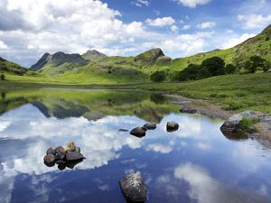 Blea Tarn and Langdale Pikes, Lake District National Park, Cumbria, England, United Kingdom, Europe by Jeremy Lightfoot