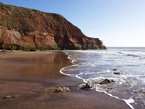 Exmouth Cliffs, Exmouth, Devon, England, United Kingdom, Europe by Jeremy Lightfoot
