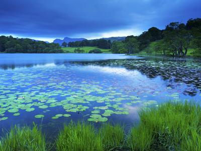 Loughrigg Tarn, Lake District National Park, Cumbria, England, United Kingdom, Europe