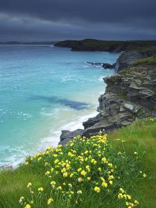 Mother Ivey's Bay, Padstow, Cornwall, England, United Kingdom, Europe by Jeremy Lightfoot