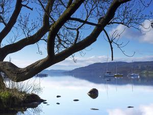 Sunrise, Ambleside, Lake Windermere, Lake District National Park, Cumbria, England, UK, Europe by Jeremy Lightfoot