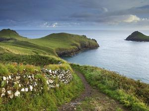 The Rumps, Pentire Point, Cornwall, England, United Kingdom, Europe by Jeremy Lightfoot