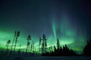 Northern Lights by Jeremy Walker