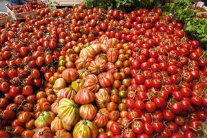 Tomato Stall by Jeremy Walker