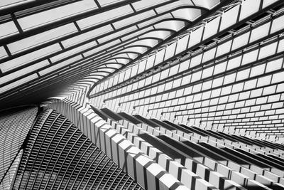 Lines in Liege
