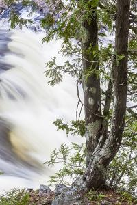 Grand Pitch on the East Branch of the Penobscot River by Jerry and Marcy Monkman