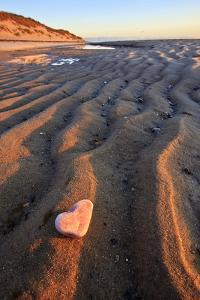 Heart-Shaped Quartz on the Beach. Great Island Trail, Wellfleet, Massachusetts by Jerry and Marcy Monkman