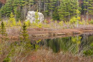 Late Fall. Round Pond, Barrington, New Hampshire by Jerry and Marcy Monkman