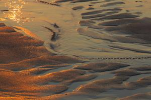 Patterns in the Sand at Coast Guard Beach in the Cape Cod National Seashore by Jerry and Marcy Monkman