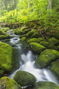 Perham Stream on Lone Mountain Near the Appalachian Trail in Mount Abram Township, Maine by Jerry and Marcy Monkman