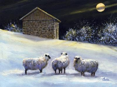 January Fleece