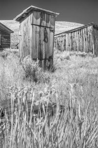Abandoned old ghost town of Bodie, California by Jerry Ginsberg