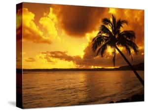 Colorful Sunrise in a Tropical Paradise, Kauai Hawaii, USA by Jerry Ginsberg