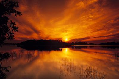 Dreamy Sunset in Swampy Waters, Everglades National Park, Florida, USA
