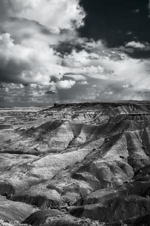 Painted Desert from Lacey Point, Petrified Forest National Park, Arizona