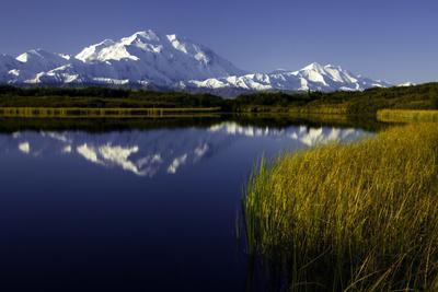 Scenic Lake View of Mt McKinley, Denali National Park, Alaska, USA
