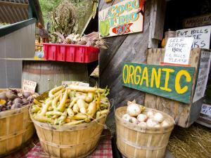 A farm stand in Holderness, New Hampshire, USA by Jerry & Marcy Monkman