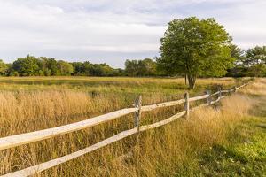 A field in Ipswich, Massachusetts. by Jerry & Marcy Monkman