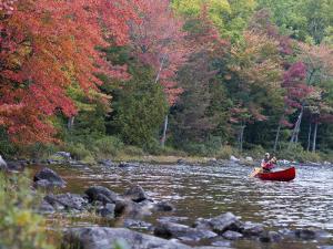 A Man Paddles His Canoe, Seboeis Lake, Millinocket, Maine, USA by Jerry & Marcy Monkman