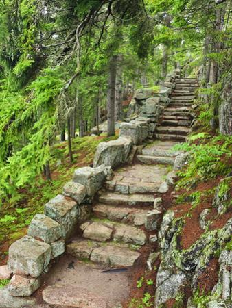 A Stone Staircase at the Thuya Gardens in Northeast Harbor, Maine, Usa