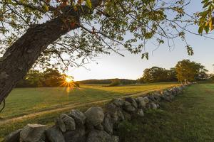 A stone wall and field at sunrise in Essex, Massachusetts. by Jerry & Marcy Monkman