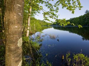 Boulter Pond at Highland Farm, York, Maine by Jerry & Marcy Monkman