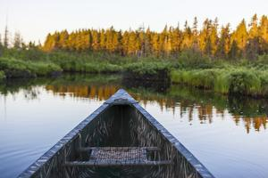 Canoeing on the Cold Stream in the Northern Forests of Maine, Usa by Jerry & Marcy Monkman