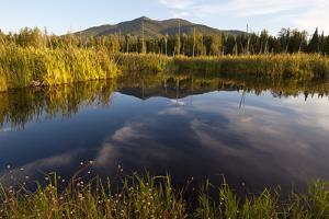 Cherry Mountain, Pondicherry NWR, White Mountains, New Hampshire by Jerry & Marcy Monkman