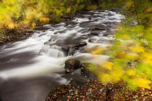 Duck Brook in Fall in Maine's Acadia National Park by Jerry & Marcy Monkman