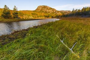 Dune Grasses and a Tidal Creek Lead to 'The Beehive', Acadia NP, Maine by Jerry & Marcy Monkman