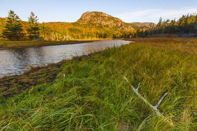 Dune Grasses and a Tidal Creek Lead to 'The Beehive', Acadia NP, Maine