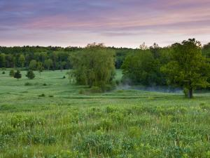 Early morning in a field at Highland Farm in York, Maine, USA by Jerry & Marcy Monkman