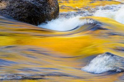 Fall Colors Along the Swift River in New Hampshire's White Mountain NF