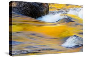Fall Colors Along the Swift River in New Hampshire's White Mountain NF by Jerry & Marcy Monkman