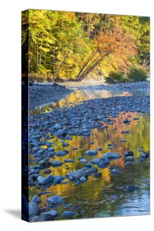 Fall Colors Reflect in the Saco River, New Hampshire. White Mountains