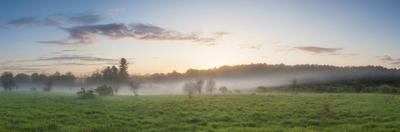 Fog in a Field in Durham, New Hampshire