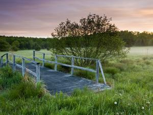 Footbridge spans a small stream, Highland Farm, York, Maine, USA by Jerry & Marcy Monkman