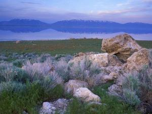 Great Salt Lake and the Wasatch Range, from Antelope Island State Park, Utah, USA by Jerry & Marcy Monkman