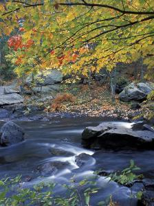 Packers Falls on the Lamprey River, New Hampshire, USA by Jerry & Marcy Monkman