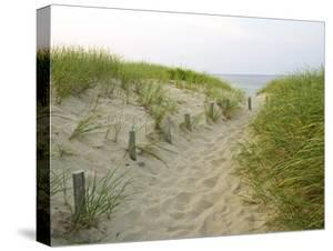 Path at Head of the Meadow Beach, Cape Cod National Seashore, Massachusetts, USA by Jerry & Marcy Monkman