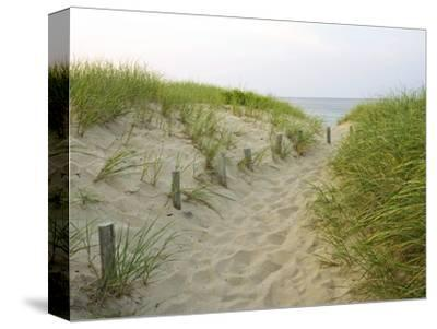 Path at Head of the Meadow Beach, Cape Cod National Seashore, Massachusetts, USA