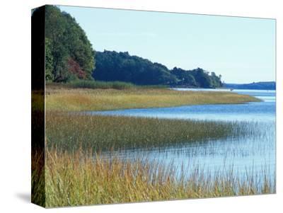 Salt Marsh Bordering the Royal River, Maine, USA